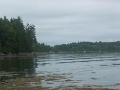 View from the shoreline of our rental cottage