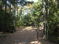 North Loop Hiking Trail Pineland Recreational Area Maine