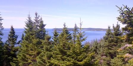 Seaview Lookout Sea Ledges Cutler Maine