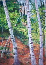 Painting of Maine Birch Trees by Ruth Friberg